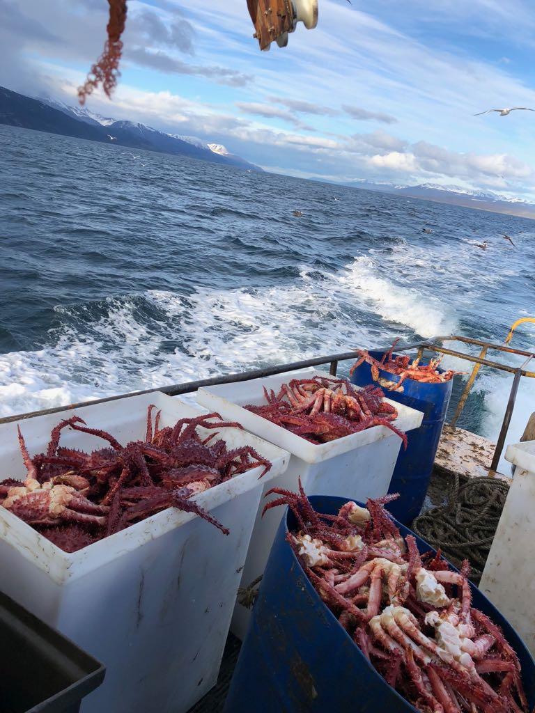 Cabe destacar que el ahumadero hace el proceso completo, desde la pesca artesanal al envasado y etiquetado de productos listos para el consumo.