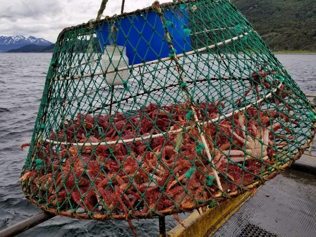 """""""La pesca artesanal está muy poco desarrollada, tanto en la costa atlántica como en la costa del canal, y sería capaz de mover producto fresco. Creo que el modelo pesquero desarrollado en Tierra del Fuego ha tendido a otro tipo de explotación"""", dijo."""